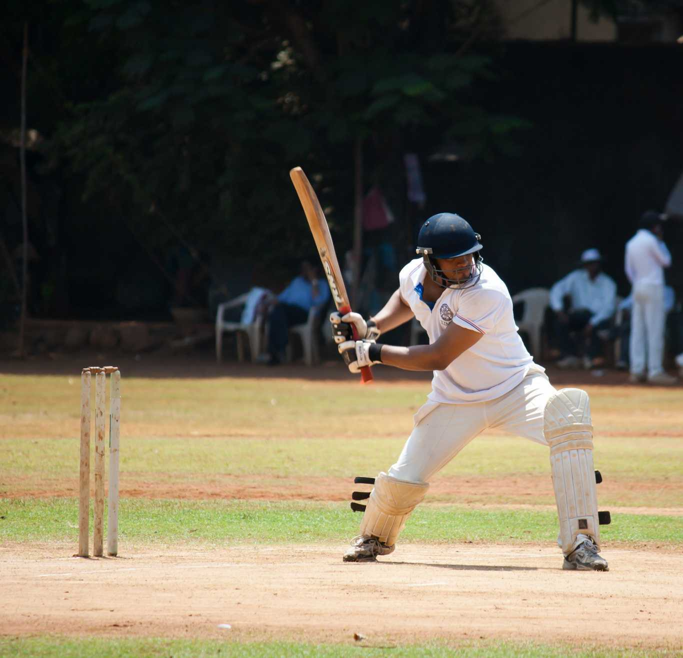 Bet365 India: favorable bets on cricket